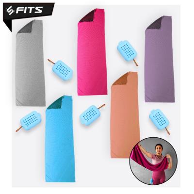 FITS Microfiber Quick Dry Towel